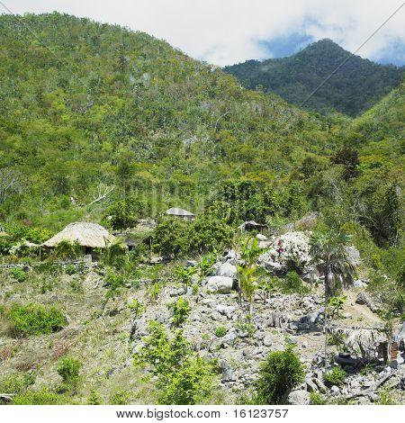 Gran Parque Nacional Sierra Maestra, Granma Province, Cuba