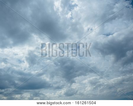 Background of the white cumulus in the sky. Picture of the white cloudy sky.