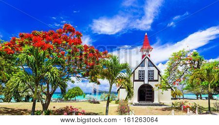 Scenery of beautiful Mauritius island - Red church on the beach with blooming flamboyant tree