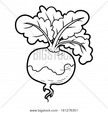 Coloring book for children, colorless vegetables Turnip