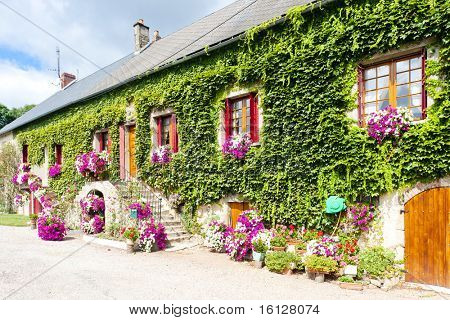 house with flowers, Burgundy, France