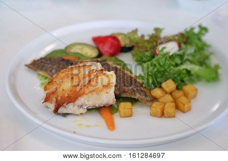 Grilled stake of Hoki fish with mixed salad. Image out of focus