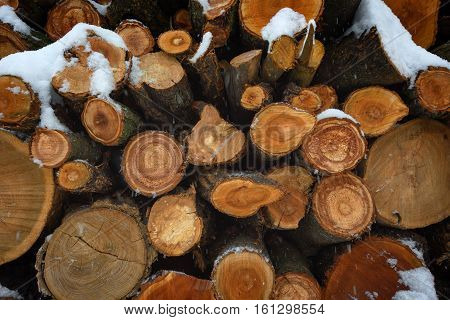 Woodpile Of Firewood Under Snow.