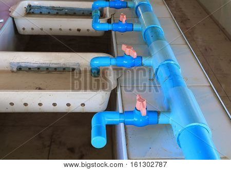 plumbing in aquatic fish farm with copy space for add text
