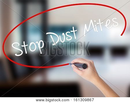 Woman Hand Writing Stop Dust Mites  With A Marker Over Transparent Board.