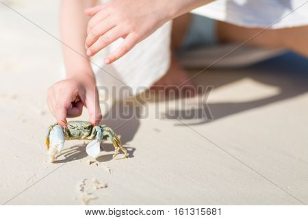 Close up of little girl holding a crab