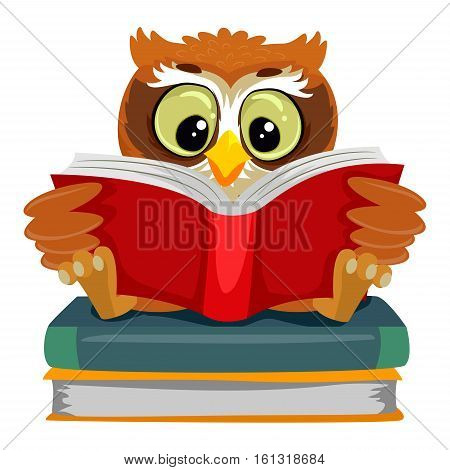 Vector Illustration of an Owl reading while sitting on the Book