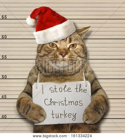 The big cat stole the Christmas turkey. It was convicted.