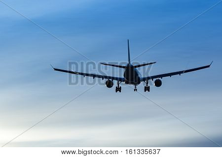 Airplane landing to airport runway late afternoon
