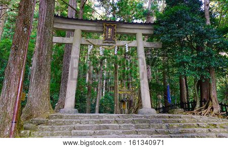 Kumano Kodo Trail, A Sacred Trail In Nachi, Japan