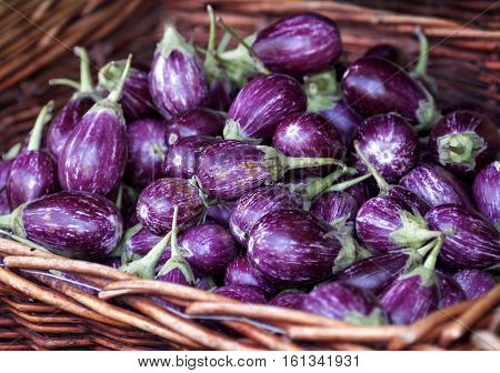Fresh Aubergine in the box in street market.Aubergine, central focus. A stack of purple aubergines on sale at a market. Eggplant display at Vegetable Stall of Local Market at Little India, Singapore