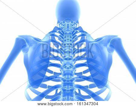3D illustration of shiny blue skeleton system medical concept.