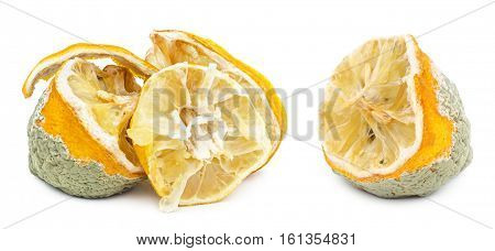 Rotten moldy and decomposing organic lemon isolated on white background