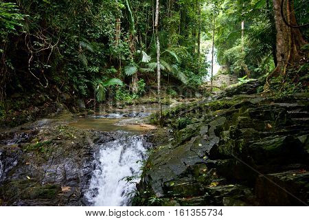 Jungle spring with waterfalls. Sunny day in tropical rainforest. South Thailand.