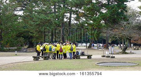 Tourists At Nara Park In Nara, Japan