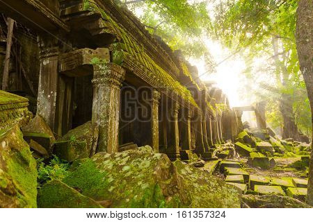 Ancient Ta Prohm Temple in the morning sun rays, Angkor, Cambodia. Ruin