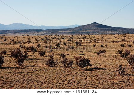The stark and desolate desert landscape of the high plains near Alamosa, Colorado