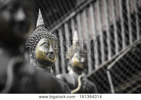 Row Of Buddha Statues At Ganagarama Temple, Colombo, Sri Lanka. Black And White.yellow Selective Col