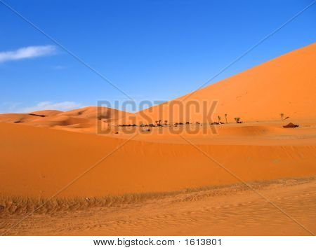 Red And Brown Sand Dunes, Erg Chebbi, Merzouga, Morocco