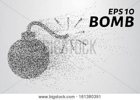 Bomb Particles. The Bomb Consists Of Circles And Points. Vector Illustration