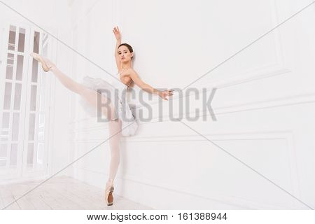 Preparation for performance. Elegant flexible female wearing white tights and beige points standing on tiptoes at the wall while holding her leg in the air