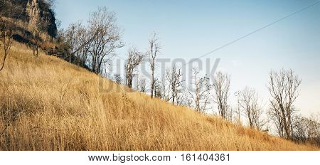 Field Hill Autumn Countryside Concept