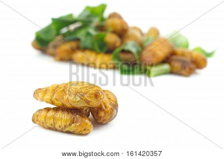 Silkworm pupa fried with green pandan leaf isolated on white background Traditional Thai food. Select focus on front subject.