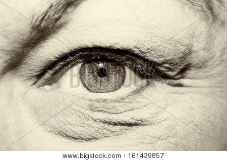 A beautiful  insightful look women's vintage  eye
