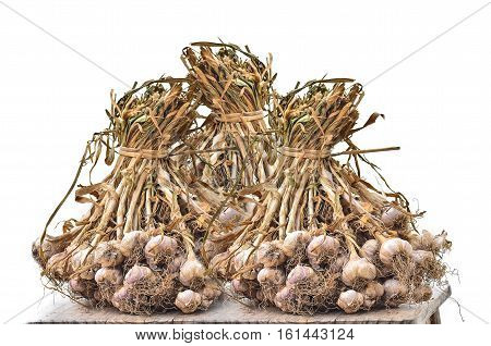 Group of Common Garlic on white background