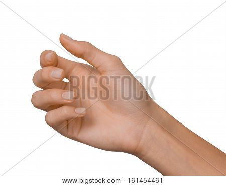 Isolated Empty Open Woman Female Hand In A Position On A White Background