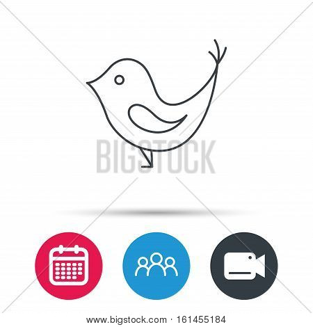 Bird with beak icon. Cute small fowl symbol. Social media concept sign. Group of people, video cam and calendar icons. Vector
