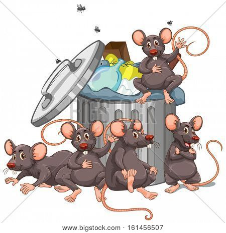 Five rats sitting by the rubbish bin illustration