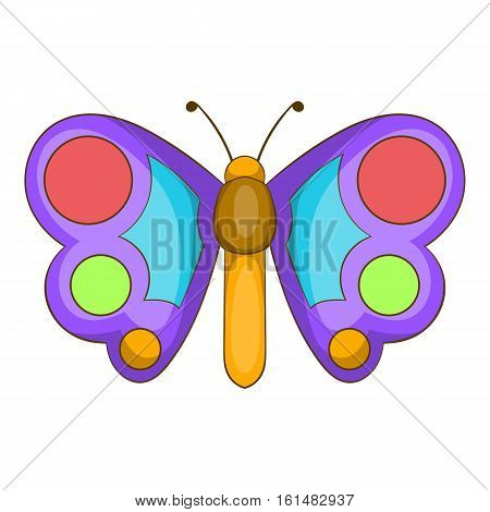 Butterfly icon. Cartoon illustration of butterfly vector icon for web design