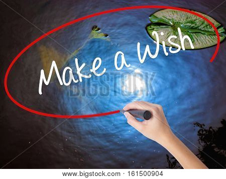 Woman Hand Writing Make A Wish  With Marker Over Transparent Board