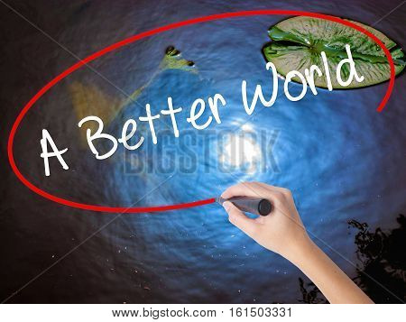 Woman Hand Writing A Better World With Marker Over Transparent Board