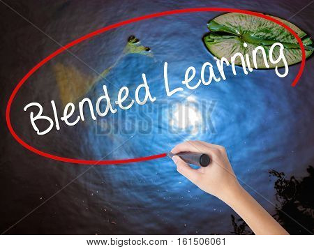 Woman Hand Writing Blended Learning   With Marker Over Transparent Board