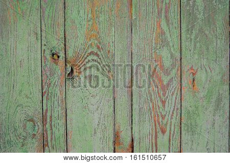 green old wooden fence with traces of terracotta paint.