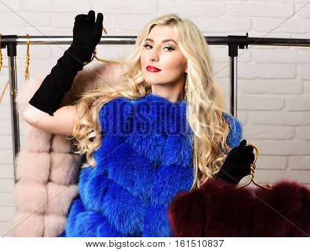 Fashionable Sexy Woman In Fur