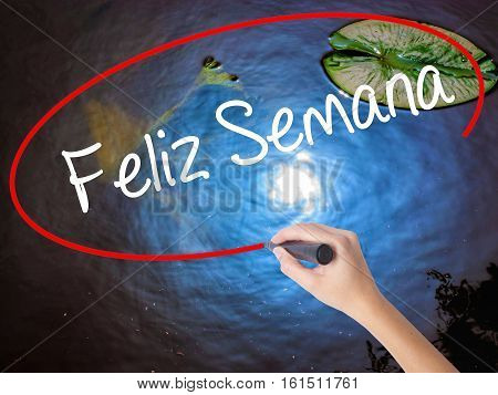 Woman Hand Writing Feliz Semana  (happy Week In Spanish/portuguese) With Marker Over Transparent Boa