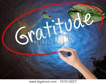 Woman Hand Writing Gratitude With Marker Over Transparent Board