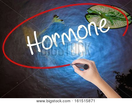 Woman Hand Writing Hormone With Marker Over Transparent Board
