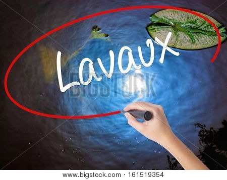 Woman Hand Writing Lavaux  With Marker Over Transparent Board