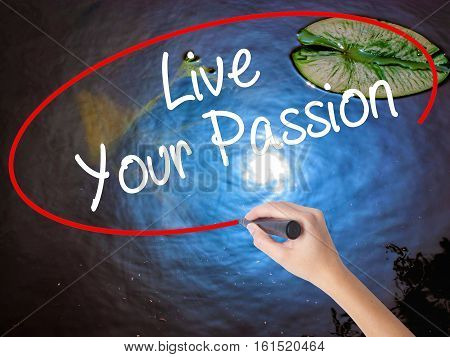 Woman Hand Writing  Live Your Passion With Marker Over Transparent Board