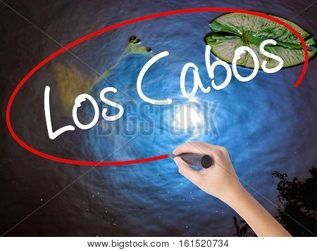 Woman Hand Writing Los Cabos With Marker Over Transparent Board