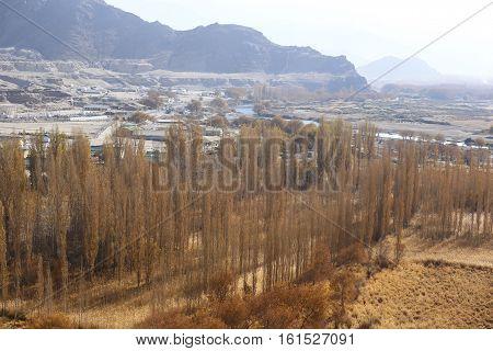 Leh palace in Leh Ladakh, Jammu and Kashmir, India