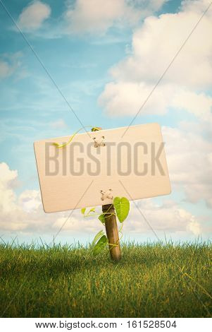 Blank wooden sign and natural background with grass and blue sky with clouds Nature information concept vertical image.