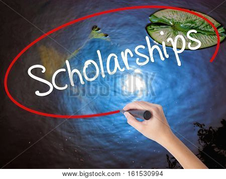 Woman Hand Writing Scholarships With Marker Over Transparent Board