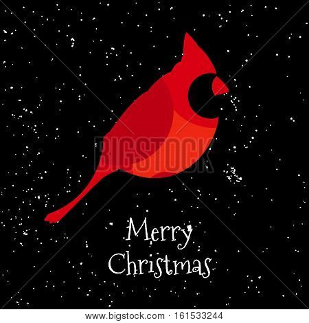 Merry Christmas card with Red cardinal and snow. Vector. Flat design.