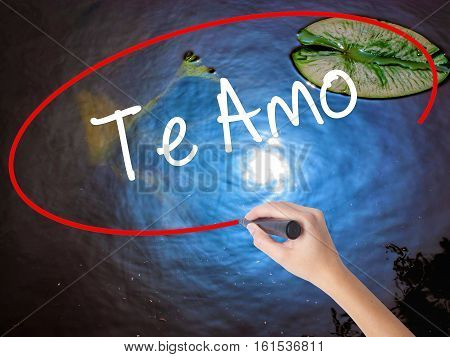 Woman Hand Writing Te Amo ( I Love You In Spanish)  With Marker Over Transparent Board