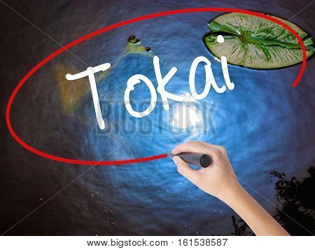 Woman Hand Writing Tokai With Marker Over Transparent Board